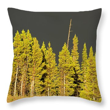 The Thunderstorm Has Passed Throw Pillow
