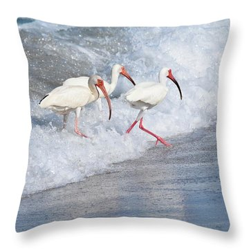 The Tide Of The Ibises Throw Pillow