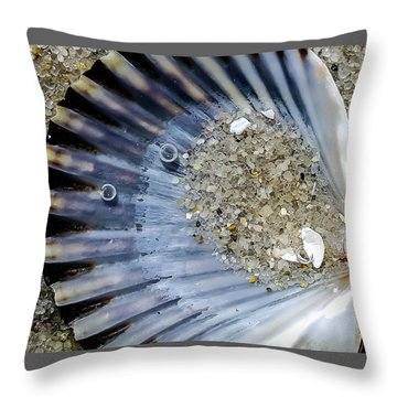 The Tides Edge Throw Pillow by Bruce Carpenter