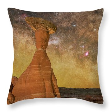 The Toadstool And The Core Throw Pillow