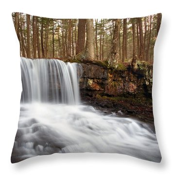 The Top Of Dutchman Falls Throw Pillow