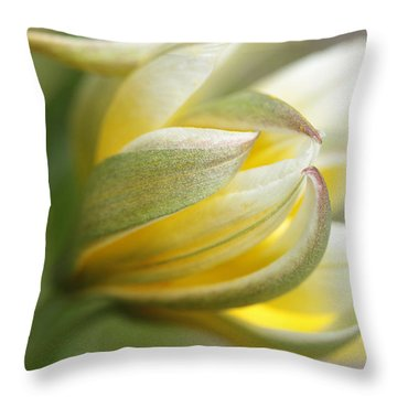 The Quiet One Throw Pillow
