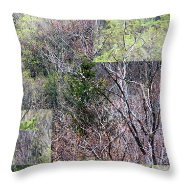 The Transition - Throw Pillow