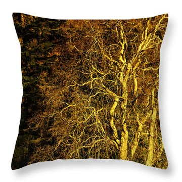 The Tree And The House Throw Pillow by Rajiv Chopra