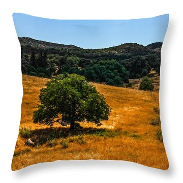 Throw Pillow featuring the photograph The Tree by Break The Silhouette