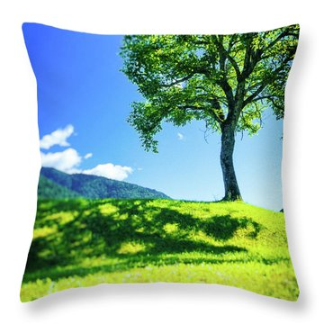 Throw Pillow featuring the photograph The Tree On The Hill by Silvia Ganora