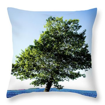 Throw Pillow featuring the photograph The Tree by Onyonet  Photo Studios