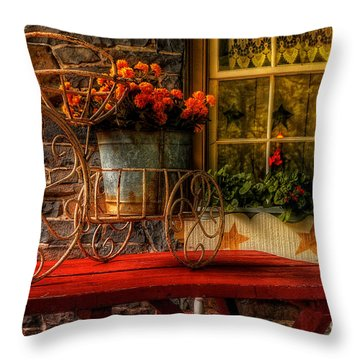 The Tricycle Throw Pillow by Lois Bryan