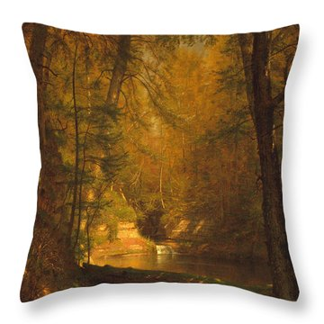 Throw Pillow featuring the photograph The Trout Pool by John Stephens