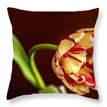 The Tulip's Bow Throw Pillow