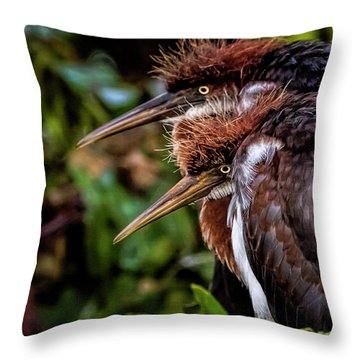The Twins Throw Pillow by Cyndy Doty