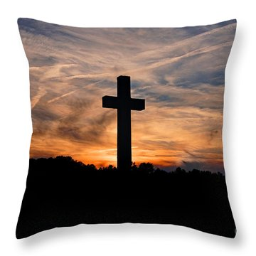 The Ultimate Sacrifice Throw Pillow by Benanne Stiens