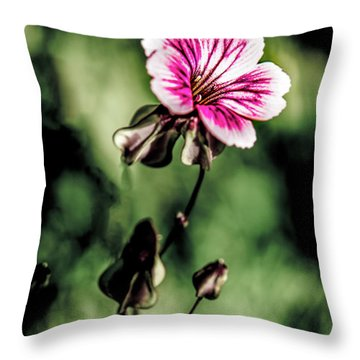 Throw Pillow featuring the photograph The Unknown Weed by Onyonet  Photo Studios