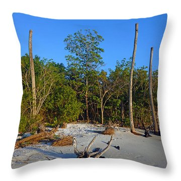 The Unspoiled Beauty Of Barefoot Beach In Naples - Portrait Throw Pillow