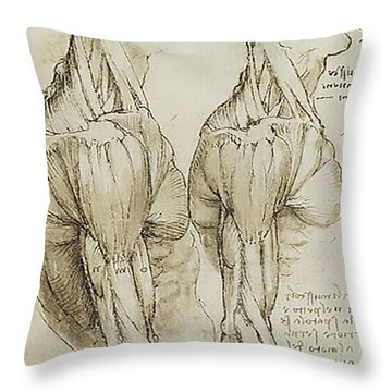 The Upper Arm Muscles Throw Pillow