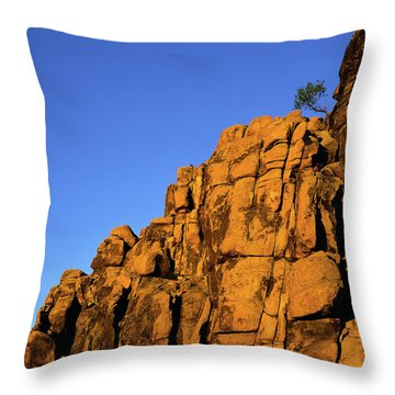 The Upper Deck Throw Pillow