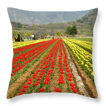 The Valley Blooms Throw Pillow by Fotosas Photography