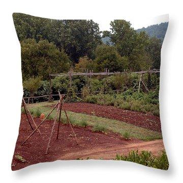 The Vegetable Garden At Monticello II Throw Pillow by LeeAnn McLaneGoetz McLaneGoetzStudioLLCcom
