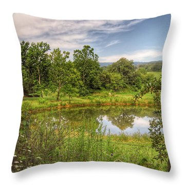 Throw Pillow featuring the photograph The View Along Deerfield Trail by Kerri Farley