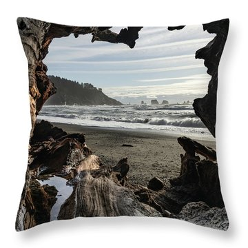 The View From Within Throw Pillow