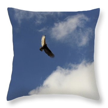 Throw Pillow featuring the photograph The View  by Kim Henderson