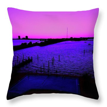 The Purple View  Throw Pillow
