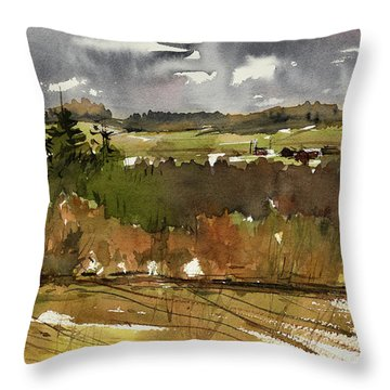 The View On Burlingame Road Throw Pillow