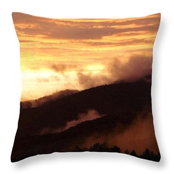 Rosy Dusk Throw Pillow by Jen McKnight