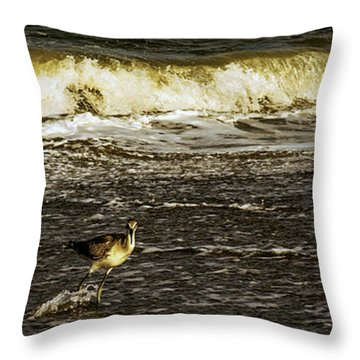 The Wading Willet  Throw Pillow