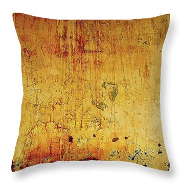 Throw Pillow featuring the photograph The Wall by EDi by Darlene
