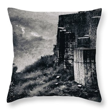 The Walls Throw Pillow by Rajiv Chopra