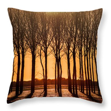 The Walnut Grove Throw Pillow