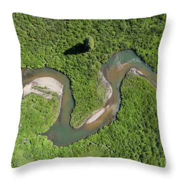 The Wandering River Throw Pillow