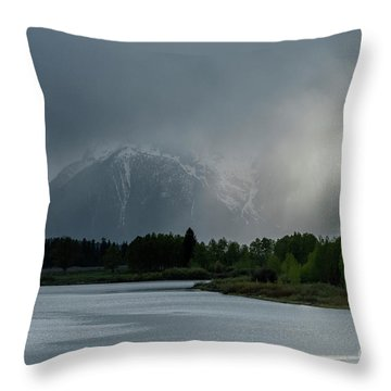Throw Pillow featuring the photograph The Warning by Sandra Bronstein