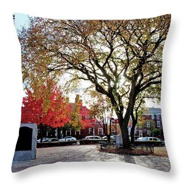 The Washington Elm Throw Pillow