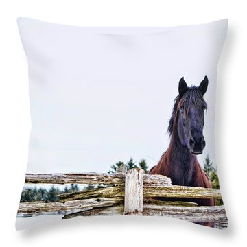 The Watcher 2 Throw Pillow
