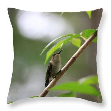 The Watcher Throw Pillow