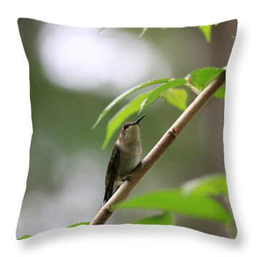 Throw Pillow featuring the photograph The Watcher by Rick Morgan