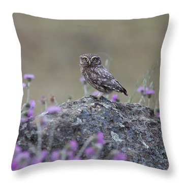 The Watcher Watched Throw Pillow