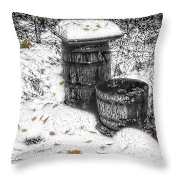 The Water Barrel Throw Pillow