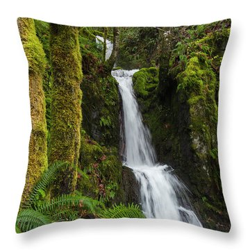 The Water Staircase Throw Pillow