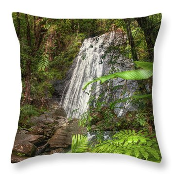 Throw Pillow featuring the photograph The Waterfall by Hanny Heim