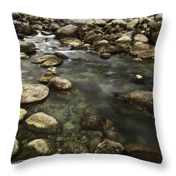 The Waters Flow Throw Pillow by Rajiv Chopra