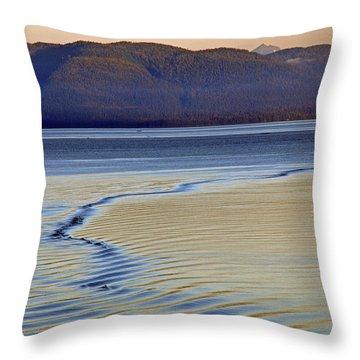 The Waves Throw Pillow by Carol  Eliassen