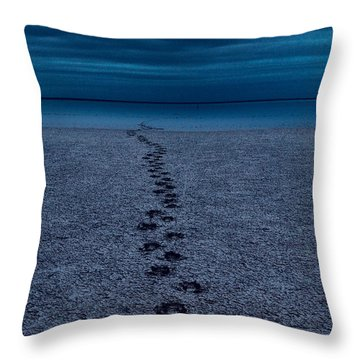 Throw Pillow featuring the photograph The Way Back by Julian Cook