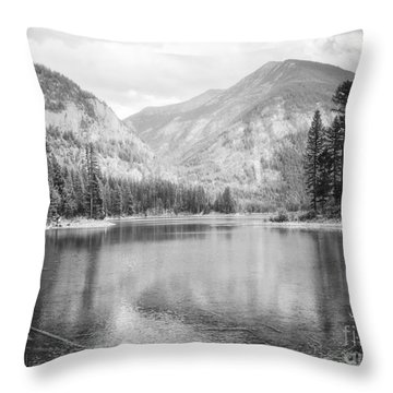 The Way Down- Journey Throw Pillow by Janie Johnson