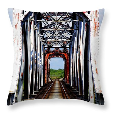 The Way Is Clear Throw Pillow by Karen Wiles