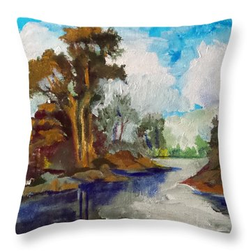 Throw Pillow featuring the painting The Way To New River by Jim Phillips