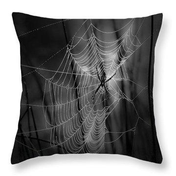 Spider Throw Pillows