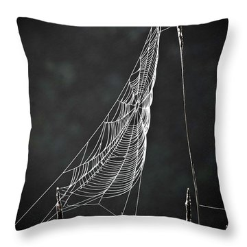 The Web Throw Pillow by Tom Cameron